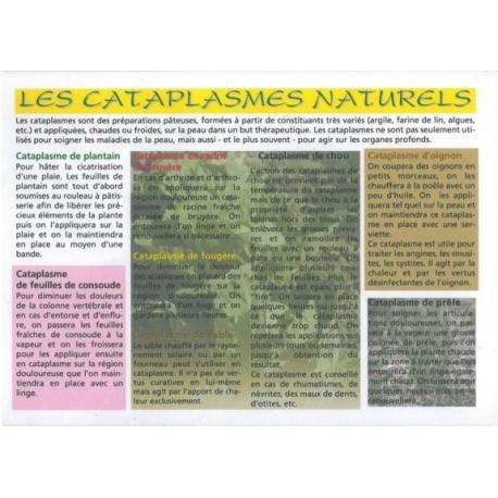 CATAPLASMES NATURELS - 15 X 21 CM