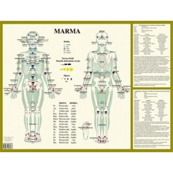 MARMA - POINTS AYURVEDIQUES - POSTER A2 PLASTIFIE