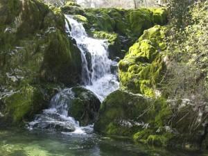 eau-de-source